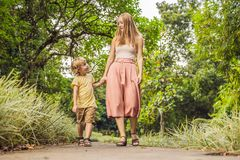 Mom and son are walking in the tropical park royalty free stock photo
