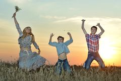 Mom and sons in the field Royalty Free Stock Photos