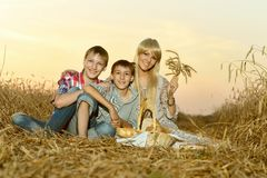Mom with sons on wheat field Royalty Free Stock Photos