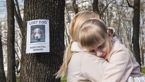 Mom soothes the girl who lost the dog. On the tree hangs the announcement of the missing puppy royalty free stock image