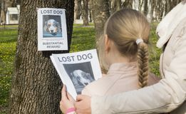 Mom soothes the girl who lost the dog. On the tree hangs the announcement of the missing puppy royalty free stock photo
