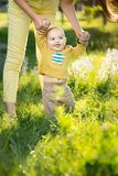 Mom teaches son walking grass Royalty Free Stock Image