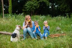 Snack on the nature. Mom with two children sitting in the woods on a fallen tree trunk and eating corn, fox terrier dof with family Royalty Free Stock Image