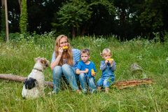 Snack on the nature. Mom with two children sitting in the woods on a fallen tree trunk and eating corn, fox terrier dof with family Stock Photos
