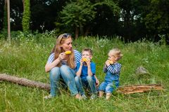 Snack on the nature Royalty Free Stock Photography