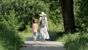 Mom and two sons are walking along the alley in a green park. Sunny summer day. Back view.  stock footage