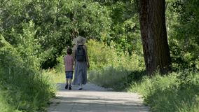 Mom and two sons are walking along the alley in a green park. Sunny summer day. Back view.  stock video