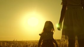 Mom walks across the field with a small child at sunset. daughter holds mom's hand, a happy family walks in evening out stock video footage