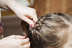 Mom weaves braids daughter at home Royalty Free Stock Images