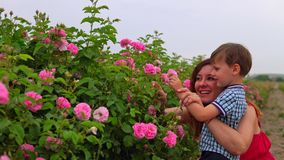 Mom with young son in a field of roses stock footage