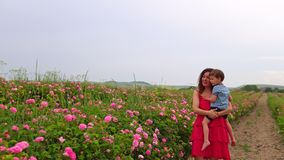 Mom with young son in flowering rose garden stock video footage