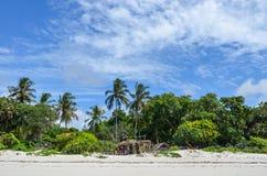 Mombasa plaża, Mombasa, Kenja, Afryka Obraz Stock