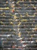 Moment av den forntida amfiteatern Royaltyfri Foto