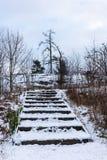 Moment av trätrappan i vinter Royaltyfria Bilder