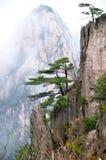 Moment för Huangshan berg Arkivbild