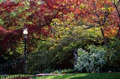 Moment med metallräcket och lampstolpen med frodiga färgrika höstträd och lövverk arkivbild
