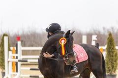 Moment mignon entre une fille et un cheval Photos stock