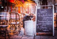 Moment in Paris Lizenzfreies Stockfoto