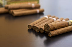 Moment of relax. Collection of cuban and dominican cigars Stock Image