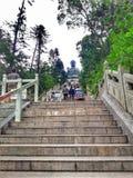 280 moment som går till Tian Tan Buddha royaltyfria bilder