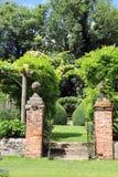 Moment som leder till topiaryen Royaltyfri Bild