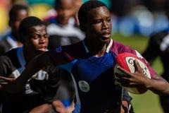 Gruppo del gioco della palla di azione di rugby Fotografia Stock Libera da Diritti