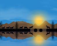 Momento da vida dos cavalos ilustração royalty free