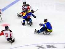 Momento del juego de hockey del trineo Fotografía de archivo