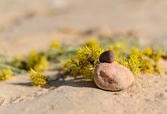 Momento del zen en una playa arenosa fotos de archivo libres de regalías