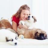 Momento divertente del cucciolo sveglio che lecca ragazza di risata immagini stock libere da diritti