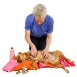 Momento do zen para o cão imagens de stock royalty free