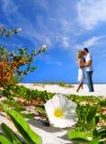 Momento romântico na praia Fotos de Stock