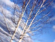 Momentos del otoño Imagenes de archivo