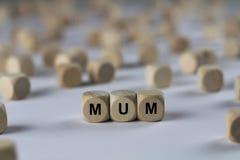 Momia - cubo con las letras, muestra con los cubos de madera Imagenes de archivo
