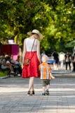 Momia e hijo que caminan en el parque, día soleado Visión desde la parte posterior Foto de archivo