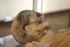 Momia esquelética Fotos de archivo