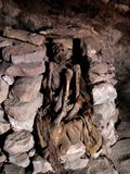 Momie dans les Andes Photos stock