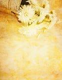 Momies blanches sur le fond texturisé Photographie stock libre de droits