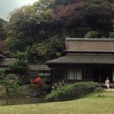 Momiji i Japan Fotografering för Bildbyråer