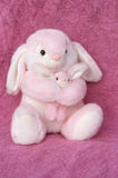 Momma and Bunny. A momma and bunny stuffed animal cuddle together Royalty Free Stock Photos