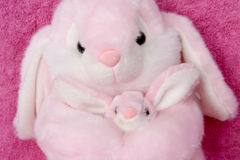 Momma and Bunny Snuggles. A momma and bunny stuffed animal cuddle together Stock Photo