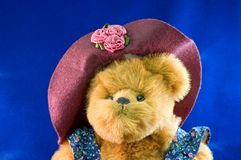Momma teddy bear with hat Stock Photos