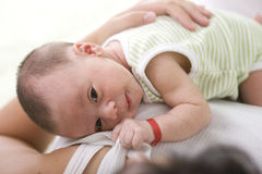 On mommy Royalty Free Stock Images