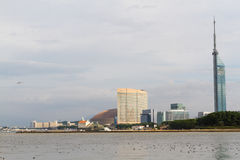 Momochi Beach & Fukuoka Tower from the Sea. FUKUOKA, JAPAN - NOVEMBER 19, 2016: Momochi Beach with crowds watching the Louis Vuitton America`s Cup World Series stock image