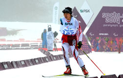 Momoko Dekijima (Japan) konkurrerar på vinterParalympic lekar i Sochi Royaltyfri Fotografi