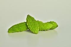 Momordica charantia fresco verde su fondo bianco Immagini Stock