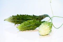 Momordica Charantia Sour cucumber Stock Photos