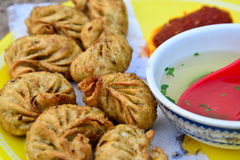 Momos de Vegeterian fotos de stock royalty free