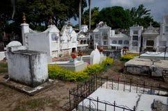 Mompox公墓 库存图片