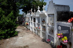 Mompox Cemetery Royalty Free Stock Photography